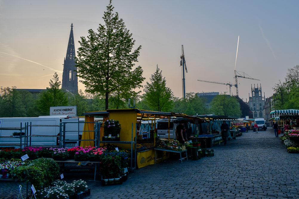 Münsterland-Reise_Münster Markt am Dom_Wochenmarkt